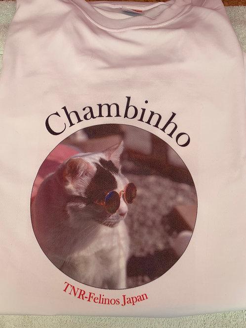 Camiseta XL Chambinho
