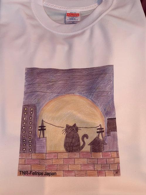 Camiseta Gatinho no Muro XL