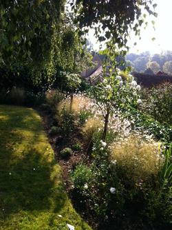 Rose Gardens
