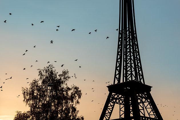 D-J PARIS