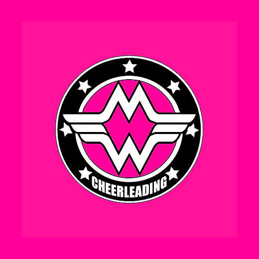 2017_cheer clinic_front_pink3.jpg