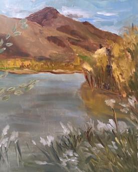 Vue du lac du Salagou