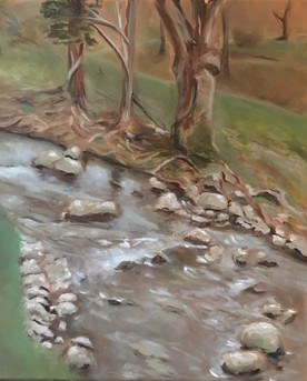 Rivière près de Lodève