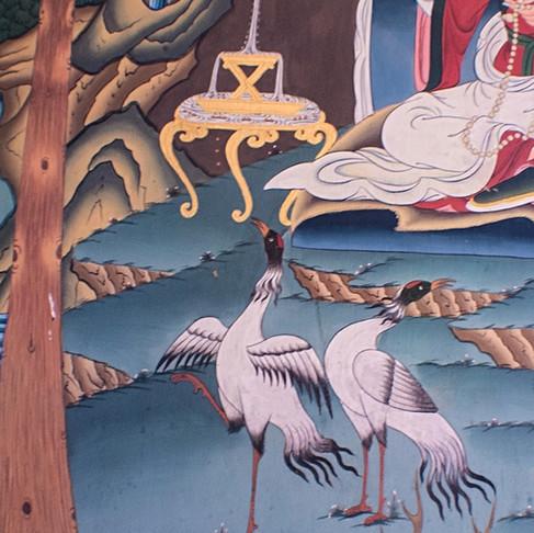 The Black-necked Cranes of Bhutan