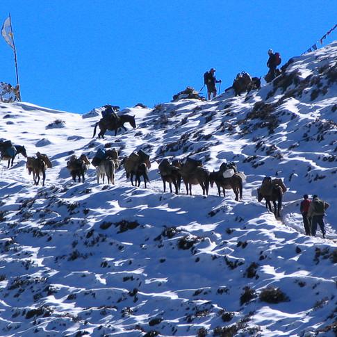 Climbing up t o Bhonte La pass