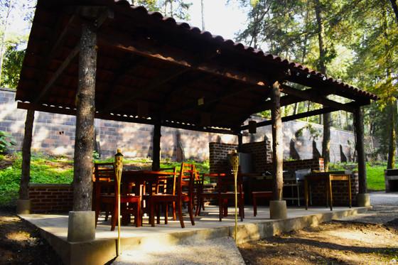 GREEN COFFEE EDUCATION - ORGANIC GREEN COFFEE BEANS - GREEN COFFEE LAB  - COFFEE AWAKENING - GUATEMALA