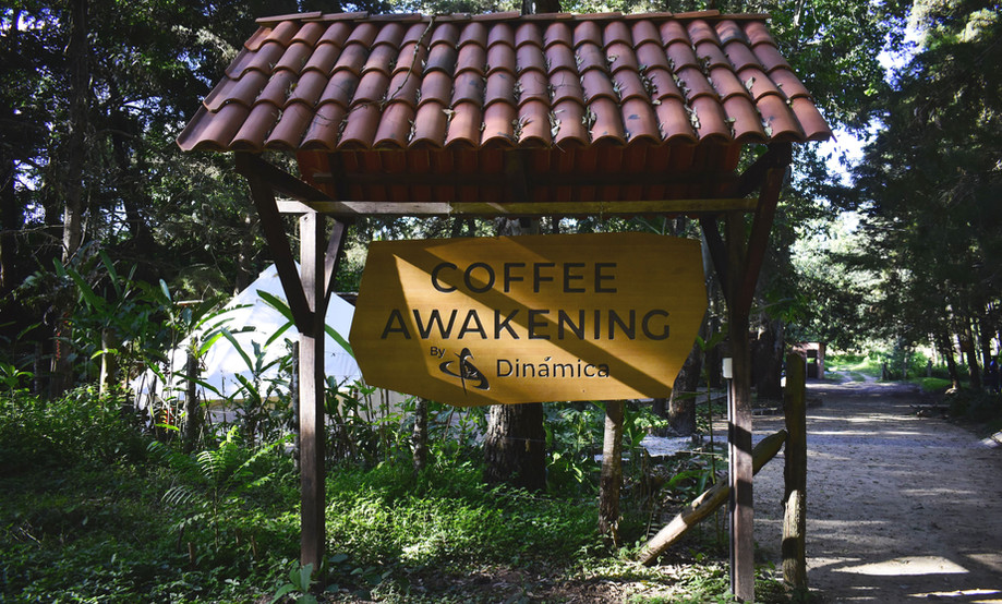 Welcome to Coffee Awakening!