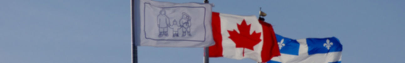 flags_medium_res-crop3_edited.jpg