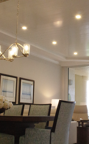 Living Room Panel Ceiling