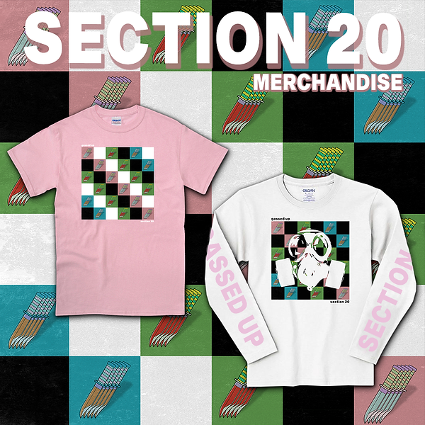 Section20_merch_all.png
