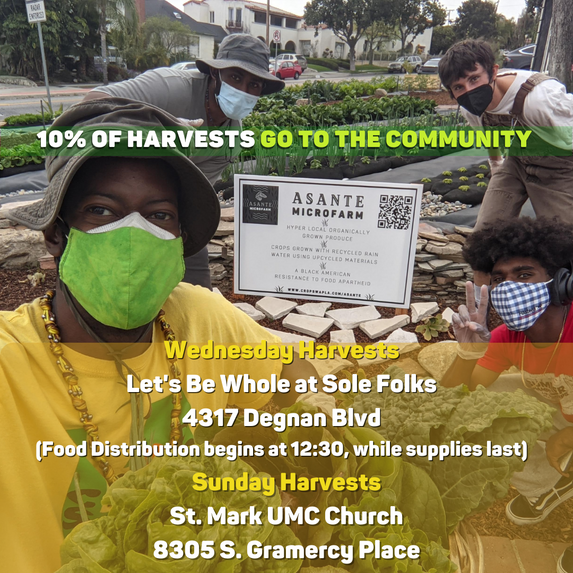 10% of harvests donated to Community Fridges