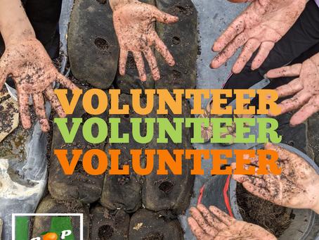 Volunteers Needed This Weekend