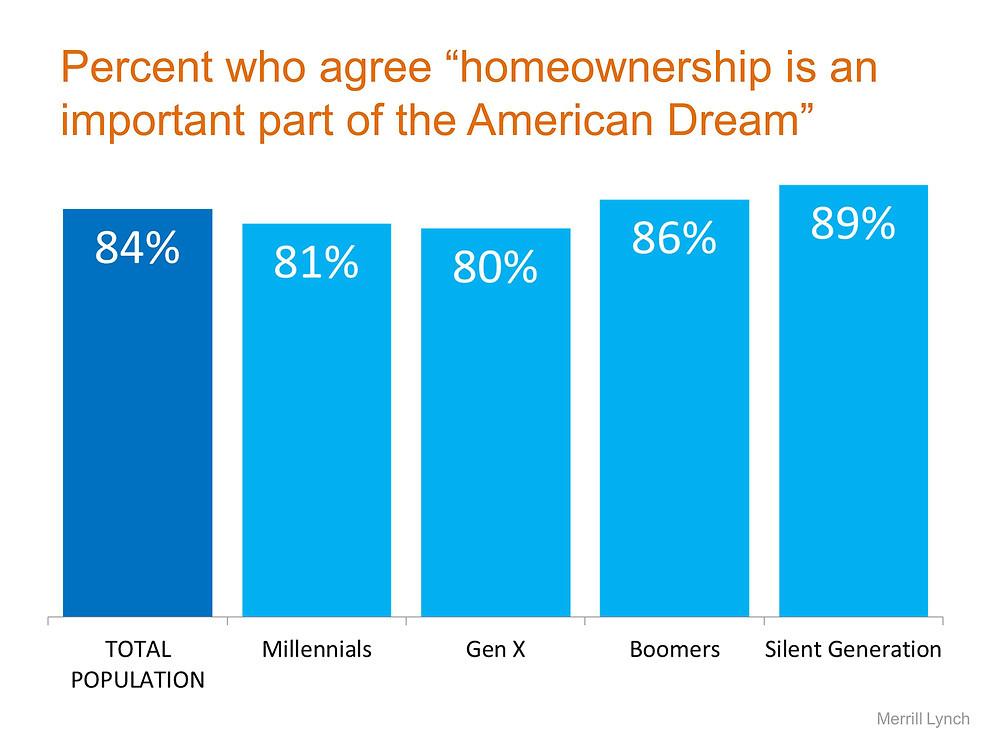 American Dream STM