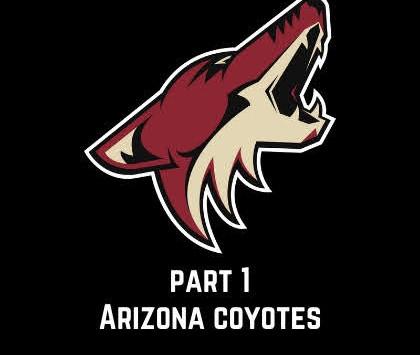 How to Fix...The Arizona Coyotes