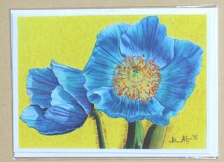 Poppy Power Flowers