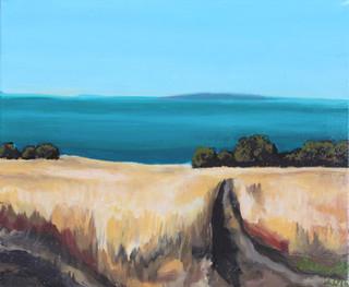 Sidney Island