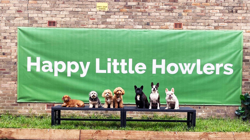 Doggy Line Up