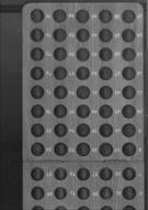 Bingo-Board #1