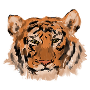Painted Tiger.png