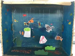 Aquarium Alice.jpg