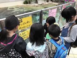 名古屋港水族館 (1)