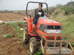 1206黄金芋収穫&レシピ案提出①_3704