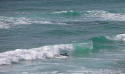 lacanau océan 3-17