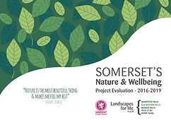 Nature & Wellbeing Project Evaluation -