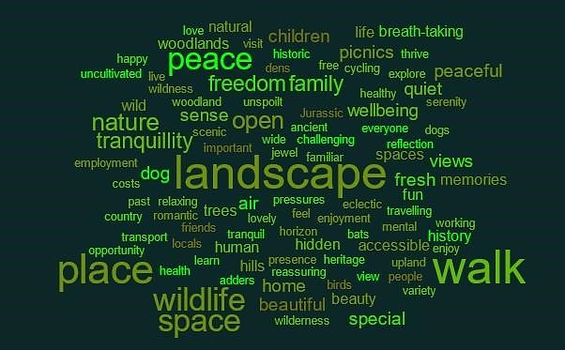 word cloud from feb 19.jpg