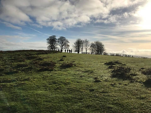 view up towards the summit at Cothelstone Hill