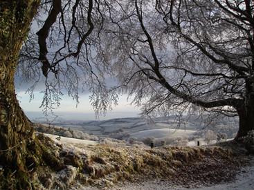 Birches Corner near Lydeard Hill