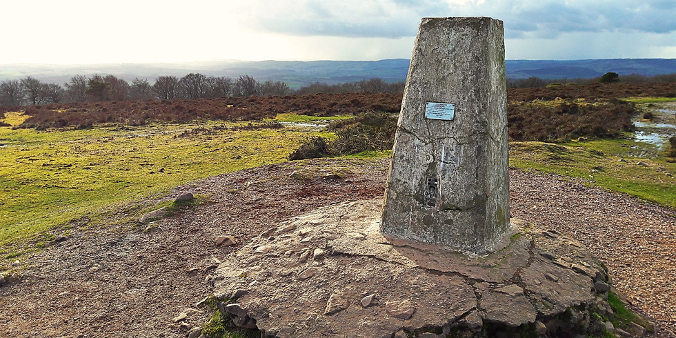 Autumn on the Quantocks Guided Walk (10 miles)