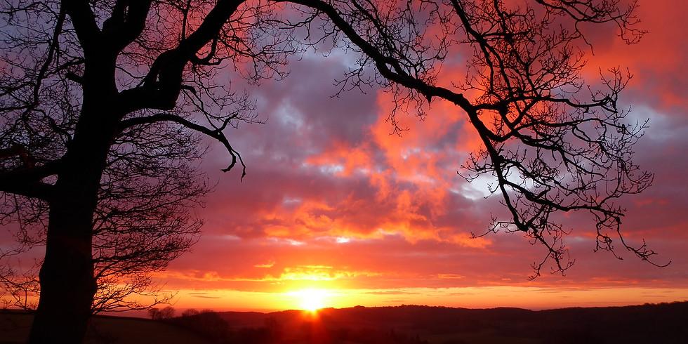 Dawn Chorus Bird Song Walk