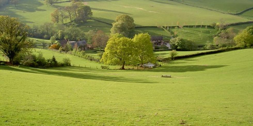 Wellbeing Countryside Walk