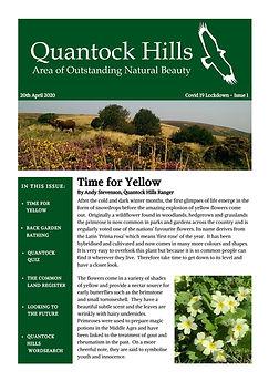 Covid 19 Lockdown Newsletter - Issue 1 (