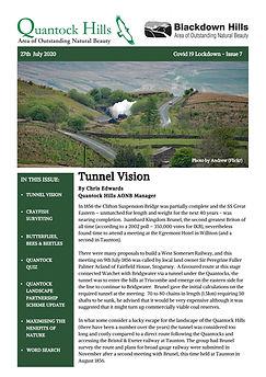 Covid 19 Lockdown Newsletter - Issue 7 (