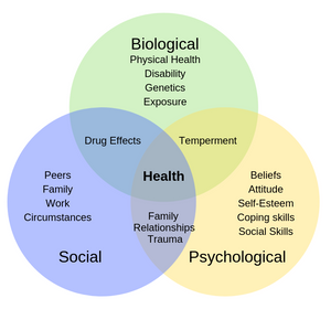 We embrace a biopsychosocial approach to health