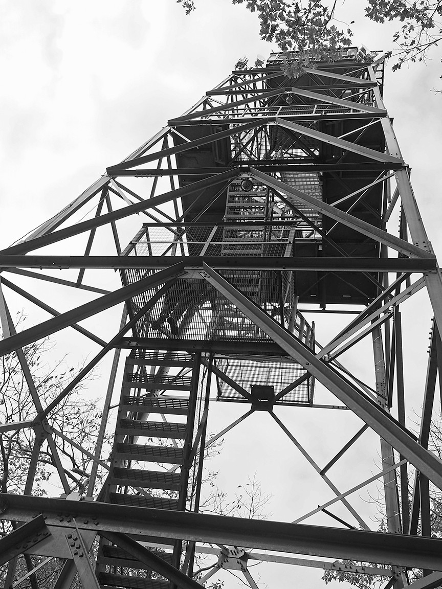 Dorset Lookout Tower monochrome