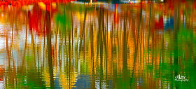 Muskoka Lakes Autumn reflections eScapes O'Connor Gallery fine-art photography Gananoque Ontario