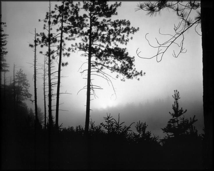 Algonquin dawn mist - simple camera