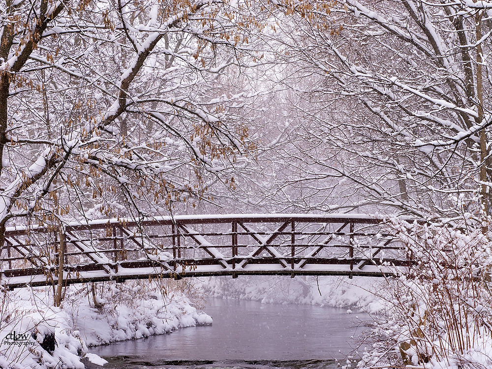Brock Trail bridge over flowing water, winter, snowy trees
