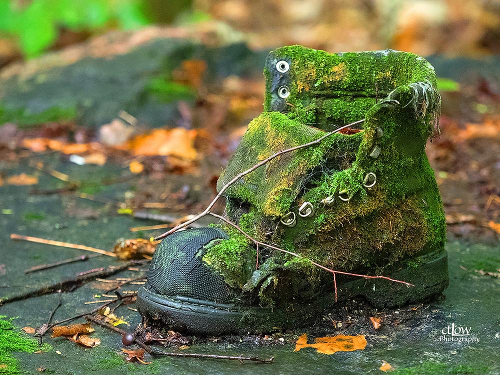 Old garden boot - unexpectedly dark