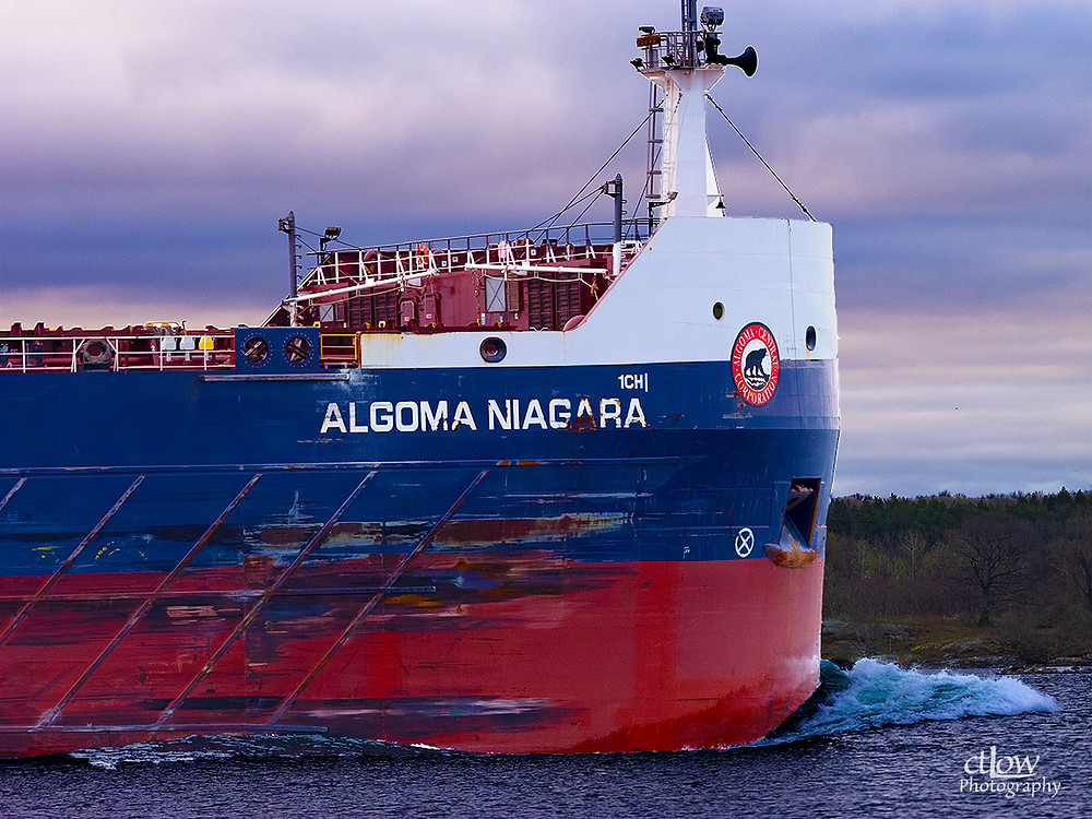 Algoma Niagara, the pointy end of 750 feet of freighter