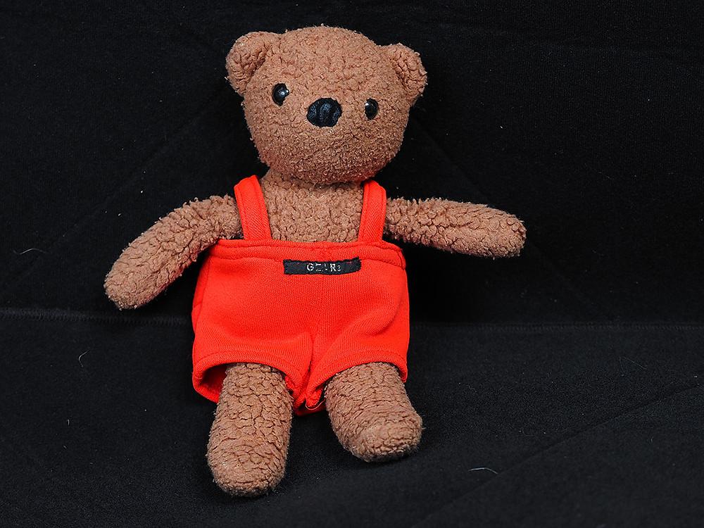 teddy bear - flash lighting