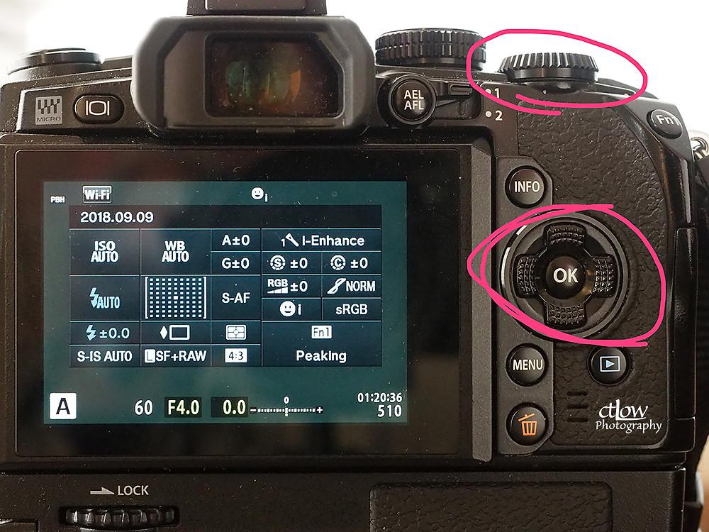 LCD Navigation Controls on a Digital Camera