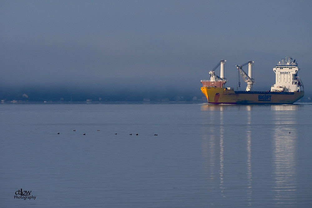 sunrise fog freighter ship Happy River St. Lawrence River Great Lakes Seaway