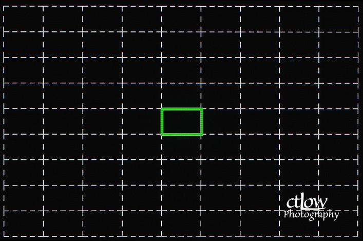LCD Single Auto-focus