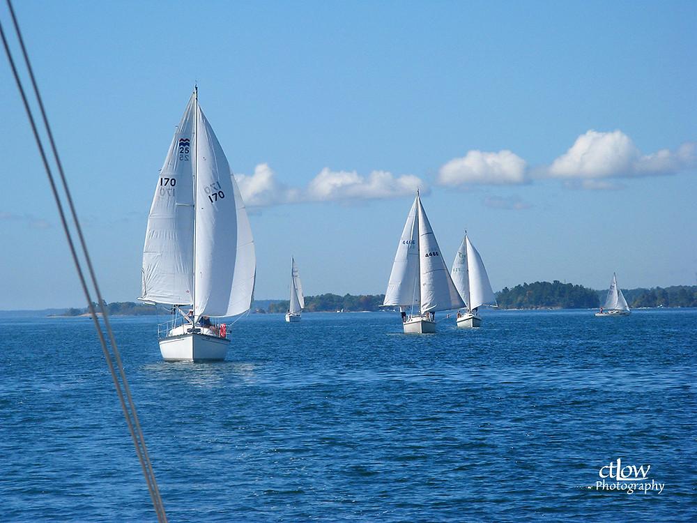 sailboats regatta racing