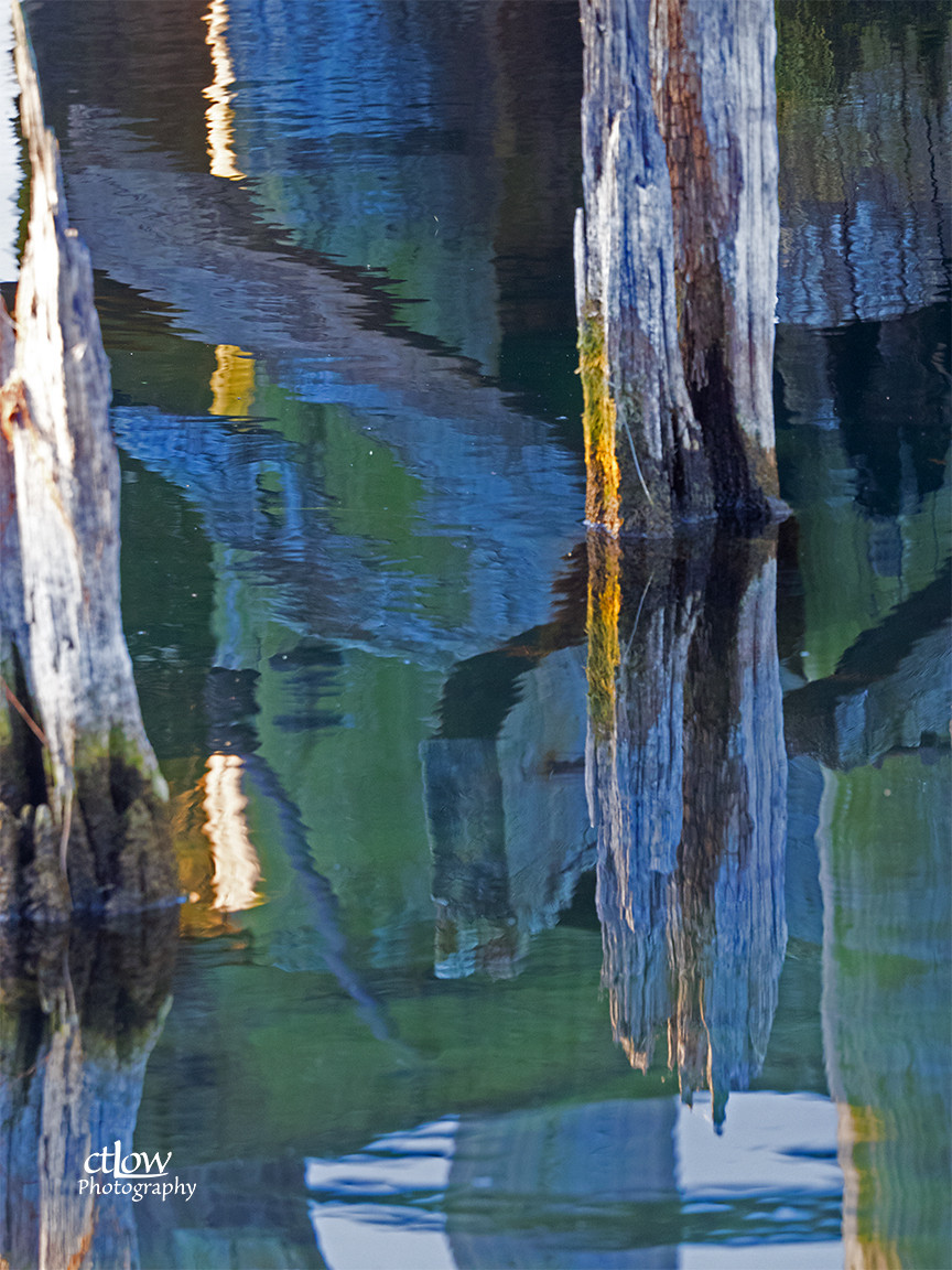 Reflection - Prescott pilings