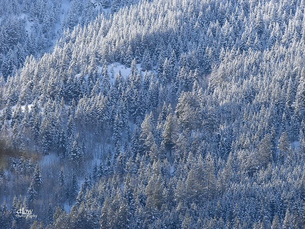 Panorama Mountain Resort, mountainside
